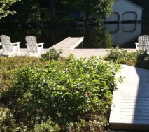 The Annex's public docks are a great place to rest, eat lunch, and watch wildlife.