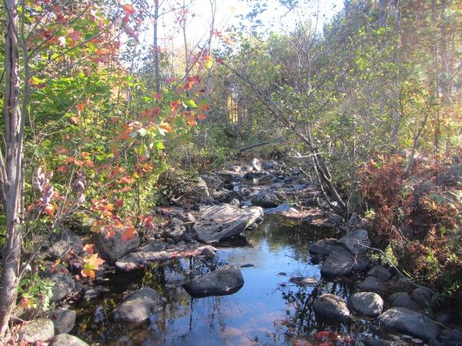 Headwater Streams